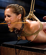 Roped and chained for extended training