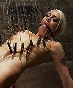 Bound, crotch roped, and tortured with pegs
