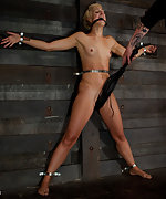 Bound tightly, gagged, clasped, whipped, trained, vibed