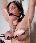Naked shaved busty slut tied up and punished