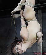 Roped, stripped, pegged, teased, suspended