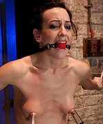 Bound spread, brutally suspended, vibed and caned