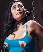 Chained, tits clamped, ass hooked, pussy dildoed