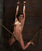 Bound, vibed, tickled and suspended