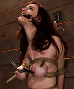 Tightly roped and trained with the crotch rope