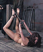 Caged, cuffed, ass hooked, dildoed and vibed