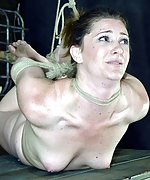 Cuffed, roped, hogtied, caned, dildoed