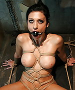 Brunette roped, ball-gagged and made to cum