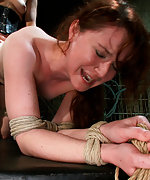 Tied up in doggie and strapon fucked