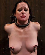 Strapped tight, pegged, clamped, caned and vibed