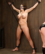 Dana dearmond mummified in black vet tape and belts